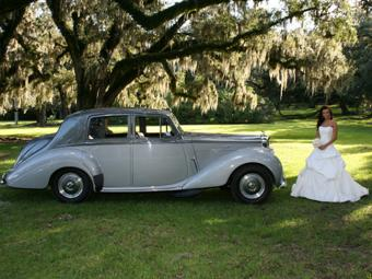 Leave it to Marque to find a pretty bride in an enchanted forest - Avery Island, LA
